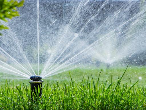 Bewässerung eines Rasens